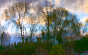 Abstract of trees clouds and grass - Stock Images 4 You