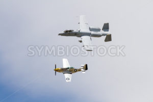 An A10 warthog flying with a P51 mustang - Stock Images 4 You