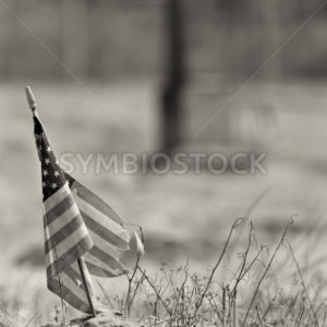 Black and white photo of a worn out american flag - Stock Images 4 You