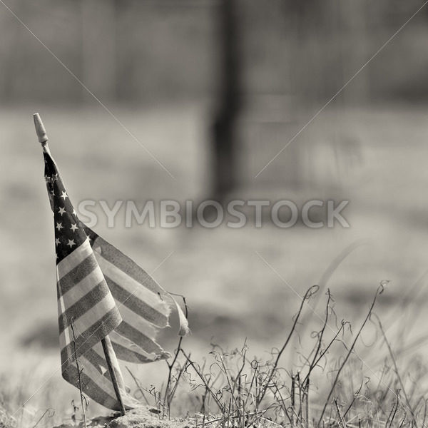 Black and white photo of a worn out american flag – Stock Images 4 You