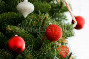 Christmas time is coming - Stock Images 4 You