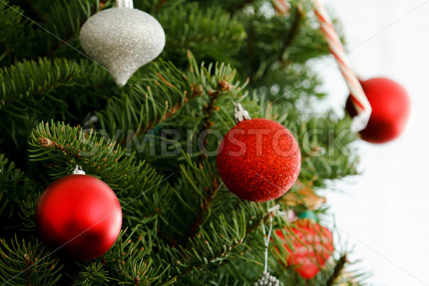 Christmas time is coming – Stock Images 4 You