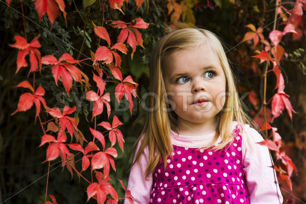 Cute young girl against red leaves. – Stock Images 4 You