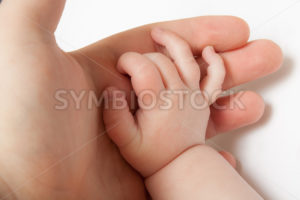 Grabbing the hand of a child - Stock Images 4 You