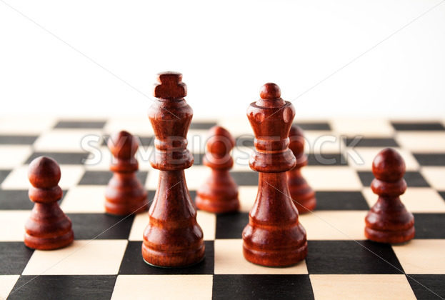 King and Queen in front of their royal subjects the pawns. – Stock Images 4 You