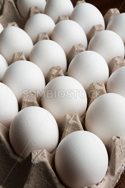 Lots of eggs – Stock Images 4 You