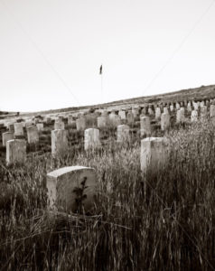 Old military cemetary in boise idaho - Stock Images 4 You