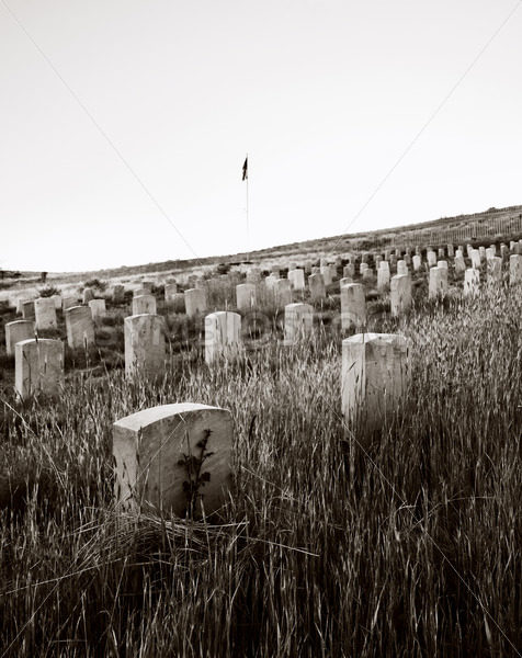 Old military cemetary in boise idaho – Stock Images 4 You