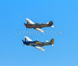 P-40 warhawk and a P-51 Mustang flying together - Stock Images 4 You