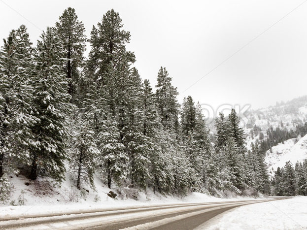 Road going through the mountains – Stock Images 4 You
