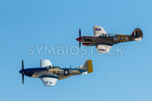 Side view of the p-40 and the famous p-51 mustang - Stock Images 4 You