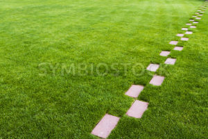 Stone pathway in the grass - Stock Images 4 You