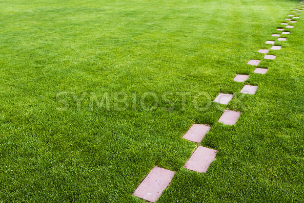 Stone pathway in the grass – Stock Images 4 You