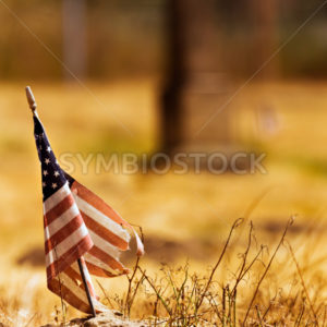 Vintage looking photo of a tattered american flag - Stock Images 4 You