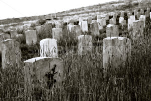 old cemetary - Stock Images 4 You