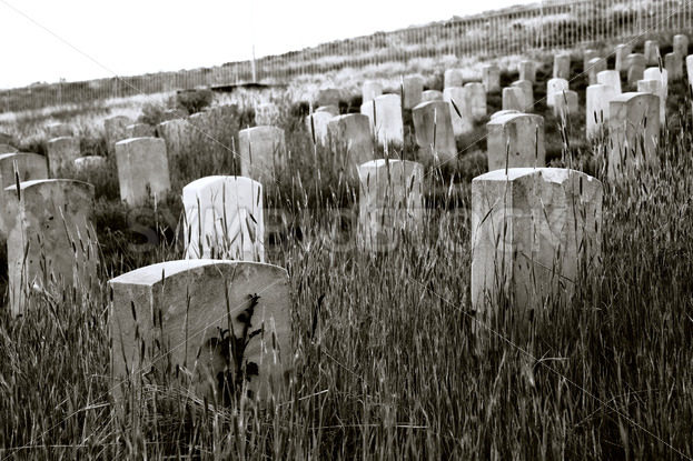 old cemetary – Stock Images 4 You