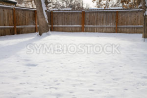 Backyard of snow - Stock Images 4 You