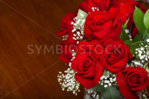 Display of love - Stock Images 4 You