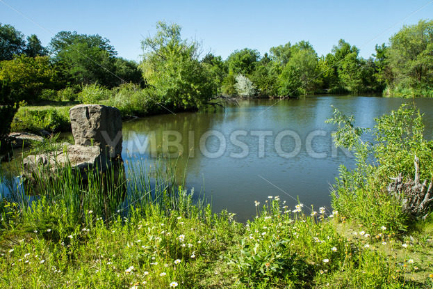 Time for some fishing in the old pond – Stock Images 4 You