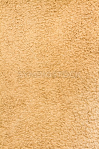 Wide view of some brownish carpet - Stock Images 4 You