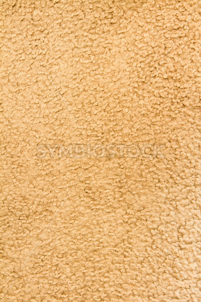 Wide view of some brownish carpet – Stock Images 4 You