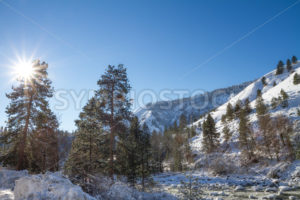 Winter in the mountains - Stock Images 4 You