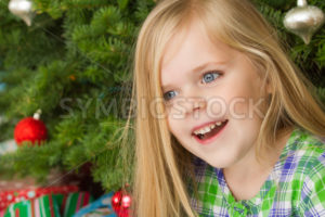 happy christmas time - Stock Images 4 You